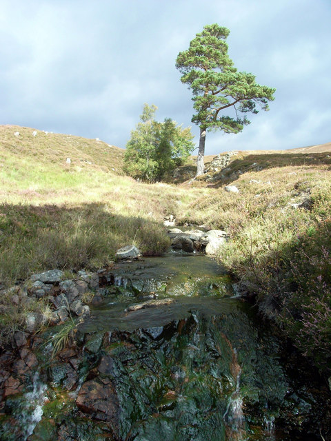 East Allt Coultain Burn