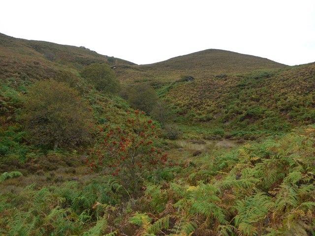 Stream valley below the Drake Stone