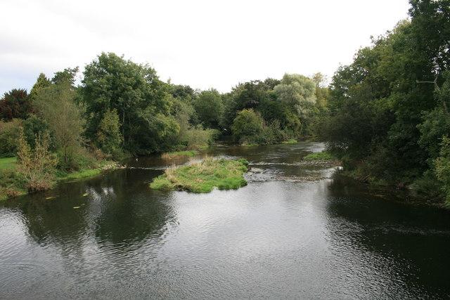 River Stour, Blandford Forum