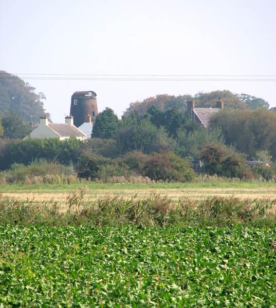 View towards Stokesby Towermill