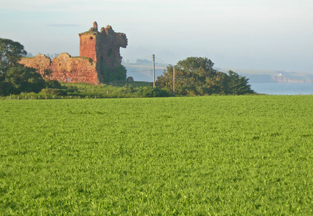 Agricultural field lying before Red Castle