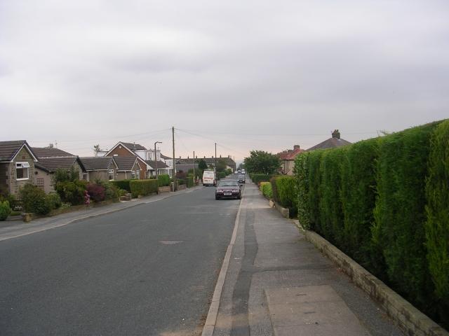 Fleet Lane - viewed from Moor Close Parade