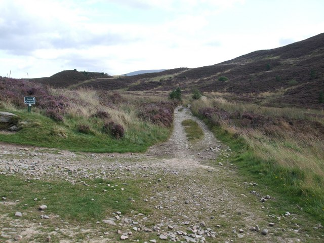 Junction of right of way paths near Ryvoan Bothy