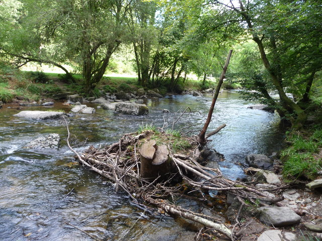 Exmoor : The River Barle & Tree Stump