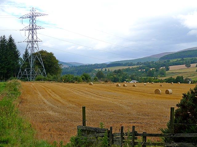 Field near Dal Neich