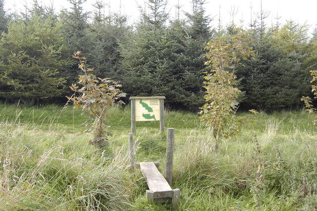 Blackdog Community Woodland