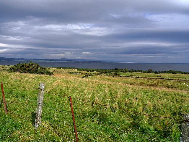 Grazing land near Tain