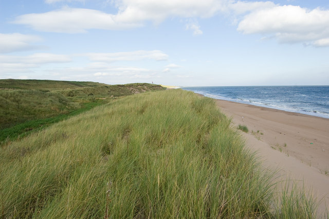 Dune Coast with Marram Grass