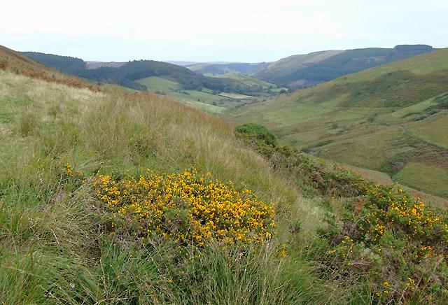 On Cefn Fannog, looking towards Abergwesyn, Powys