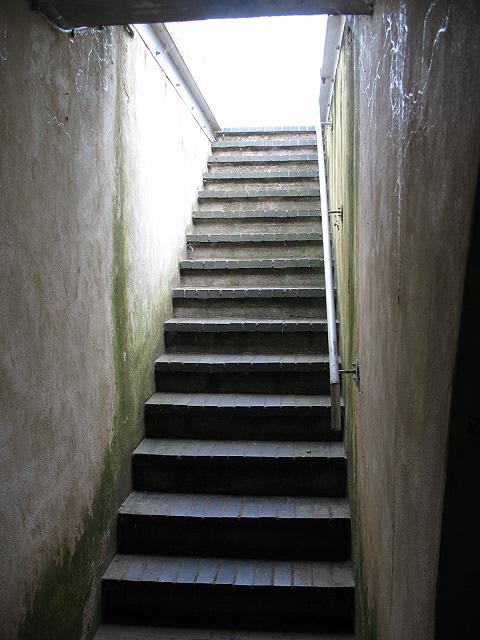 Manor House: Steps to the ice-house