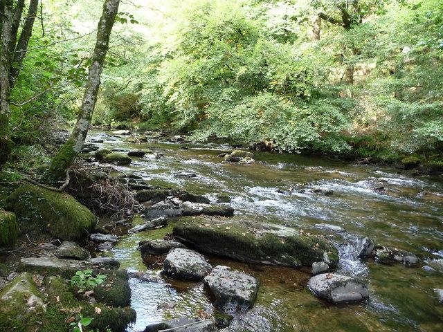 Exmoor : The River Barle & Tarr Steps Woods