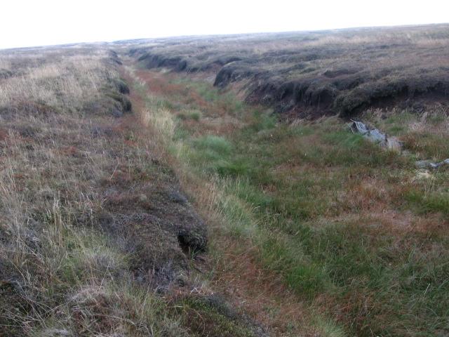 Linear Dike near South Clough Moss