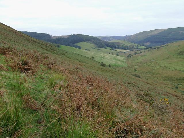 Cwm and moorland south-west of Abergwesyn, Powys