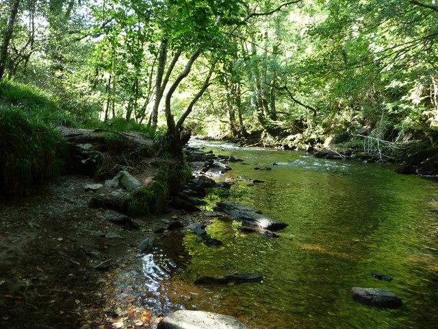 Exmoor : The River Barle & Riverside