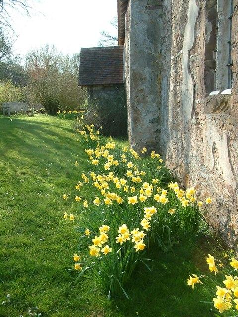 Springtime - St Bartholomew's, Lower Sapey