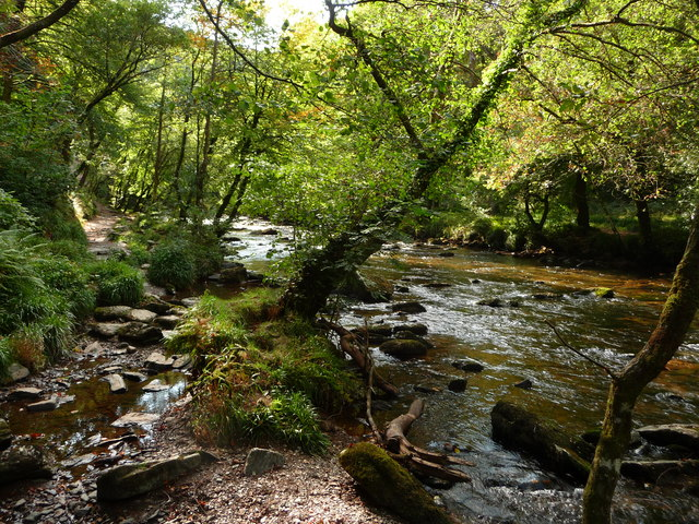 Exmoor : The River Barle in Tarr Steps Woods