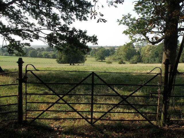 Parkland near Tolethorpe Hall