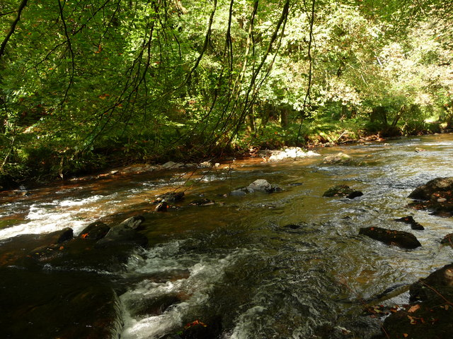 Exmoor : The River Barle