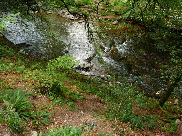 Exmoor : The River Barle & River Bank
