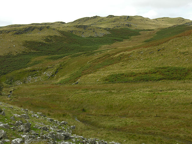 Southern slopes of Disgwylfa