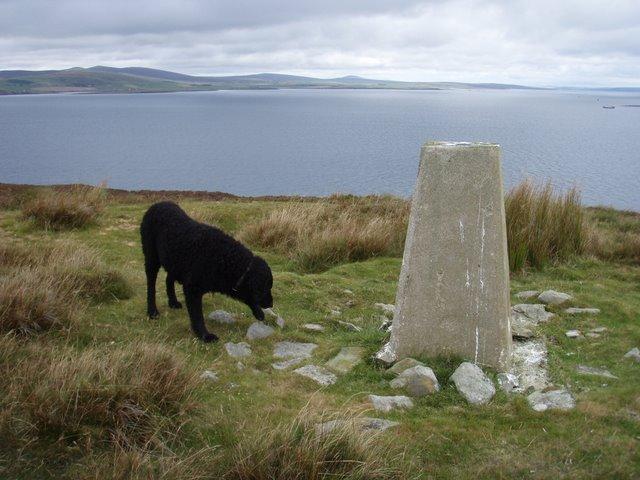 Trig point on the Lyrawa Hill ridge