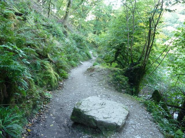 Exmoor : Riverside Path & Rock