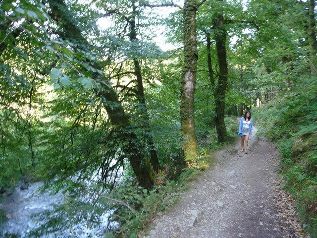 Exmoor : Riverside Path, Woodland & River Barle