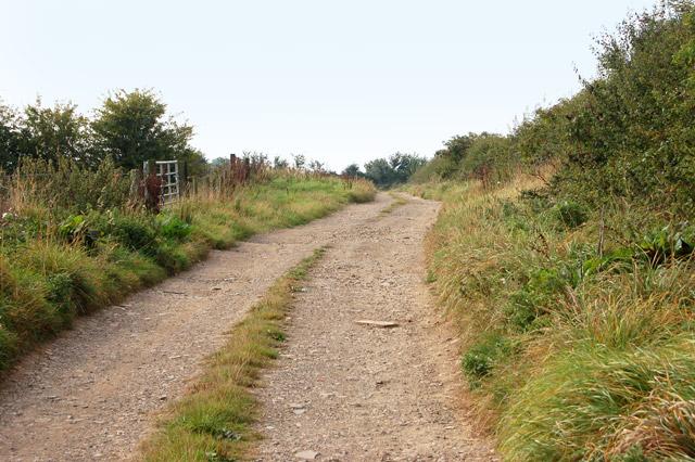 Farm track east of Napton (1)