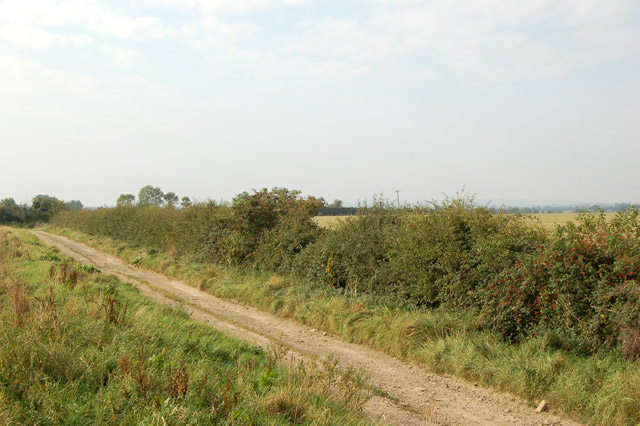 Farm track east of Napton (2)