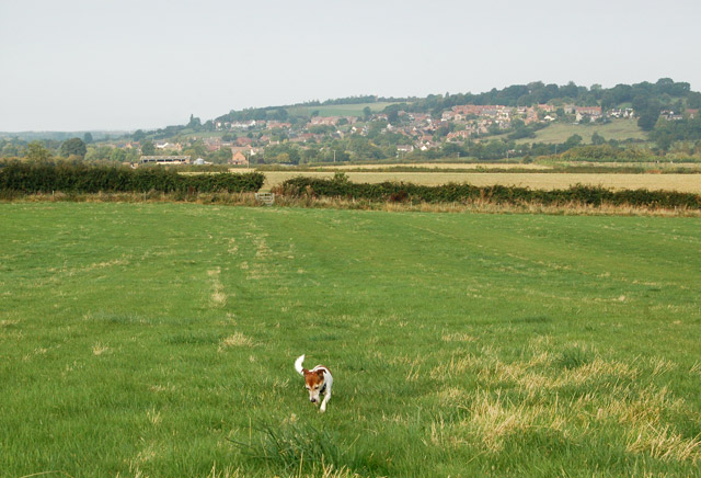 Public footpath west to Napton (4)