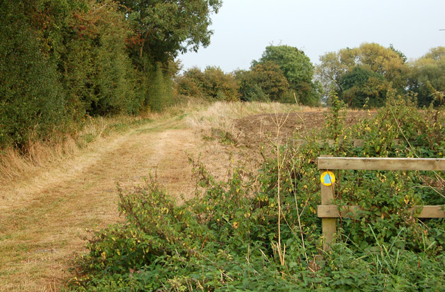 Start of bridleway to Southam Holt