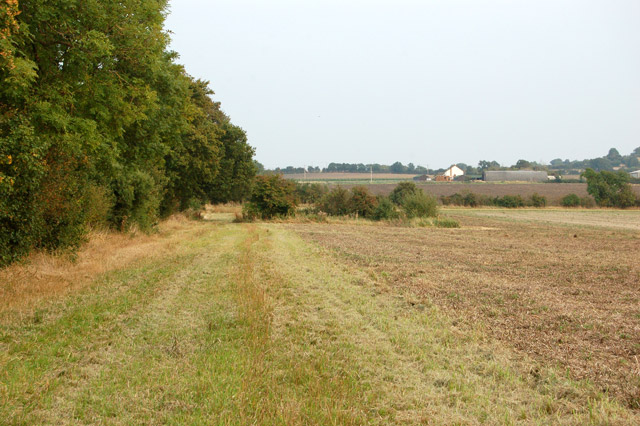 Bridleway to Southam Holt (1)