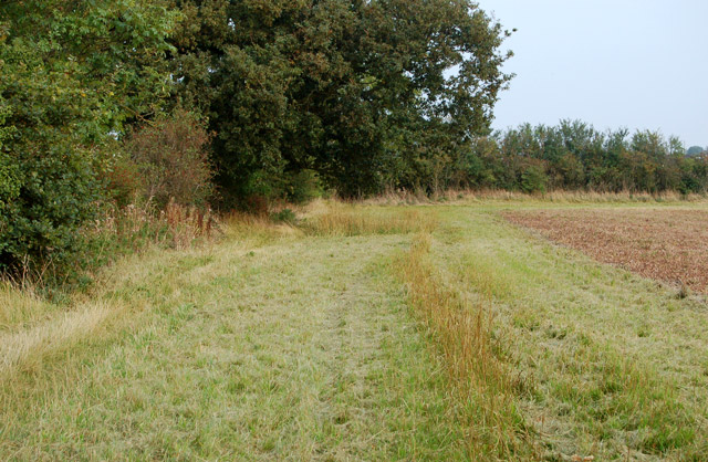 Bridleway to Southam Holt (2)