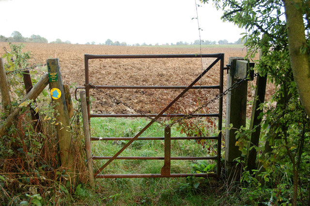 Bridleway to Southam Holt (3)