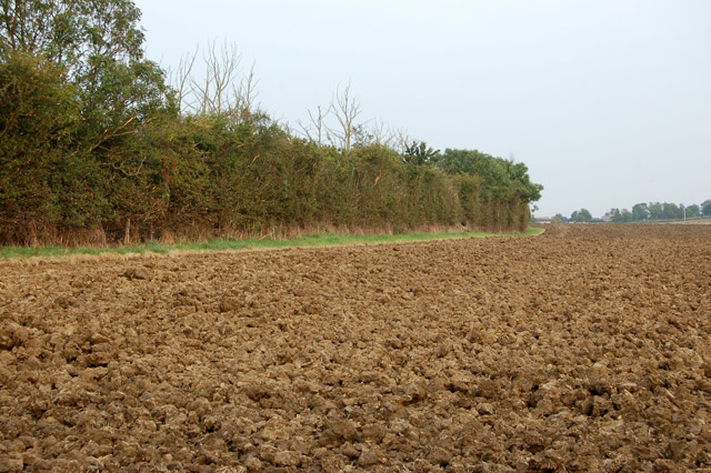 Footpath to Southam Holt at edge of ploughed field