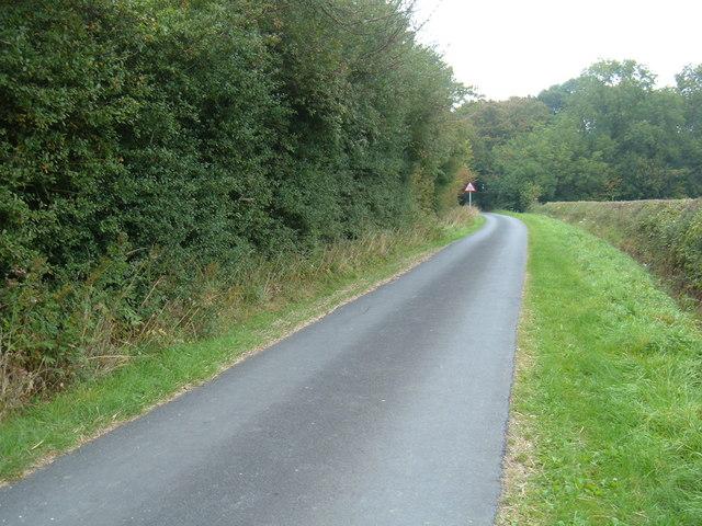 Minor Road Towards Watton