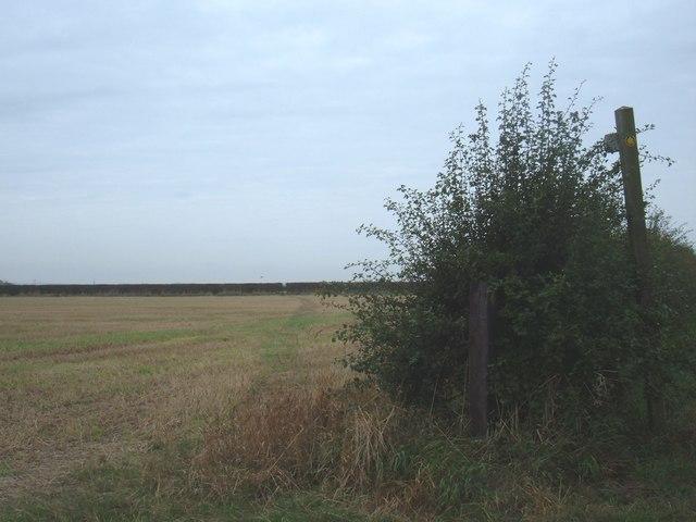 Footpath to Lockington