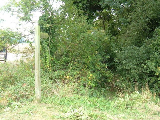 Footpath near Brickyard Farm