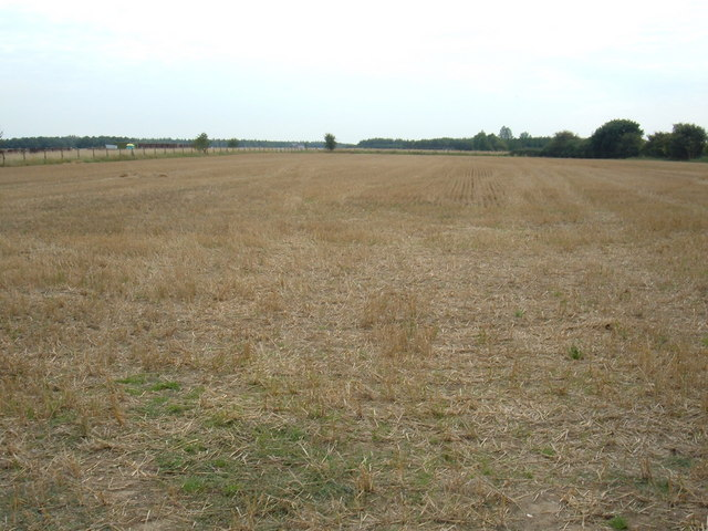 Farmland, Leconfield Grange