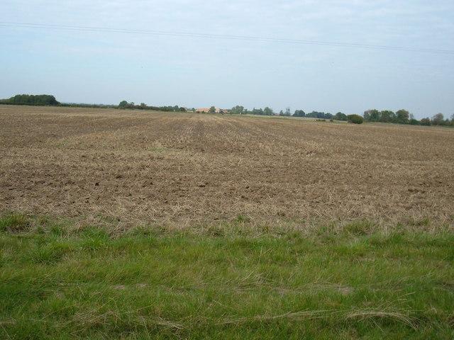 Farmland, Decoy Farm