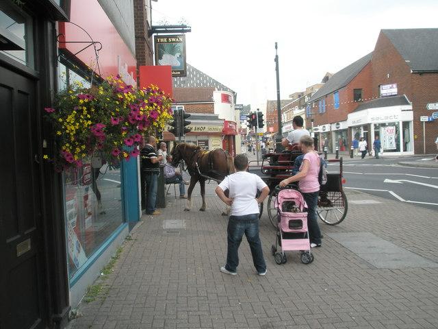 An equine presence in Cosham High Street
