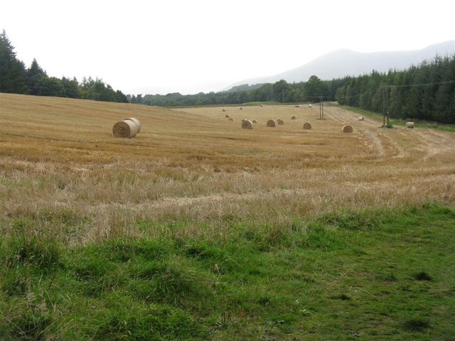 Harvest over at Penicuik