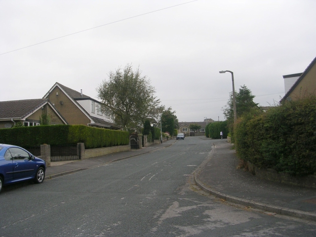 Coniston Avenue - viewed from Parkside Drive