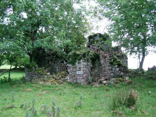Ruin at Pant-y-clogau
