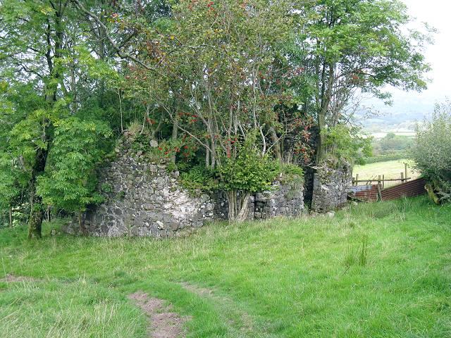 Ruin on farm track below Clogau bach
