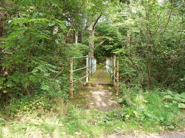 The Footbridge over the Forestburn at Pauperhaugh.