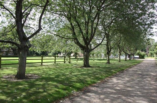 Churchyard and The Grange