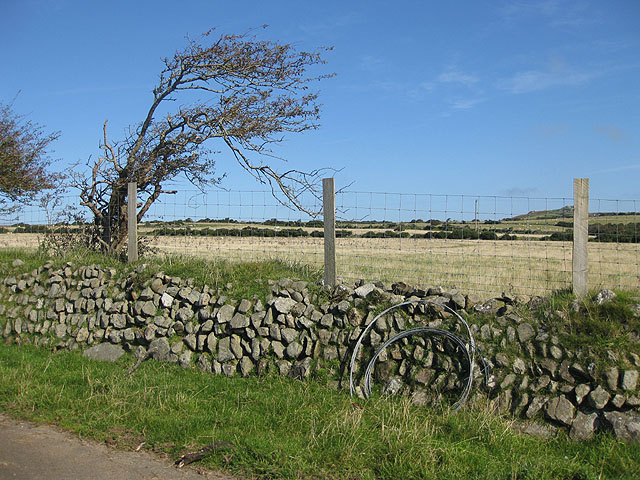 Stone wall by grazing land