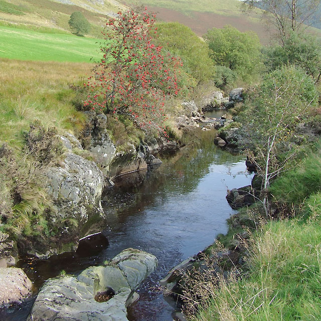 The Afon Tywi near Dolgoch Hostel, Ceredigion