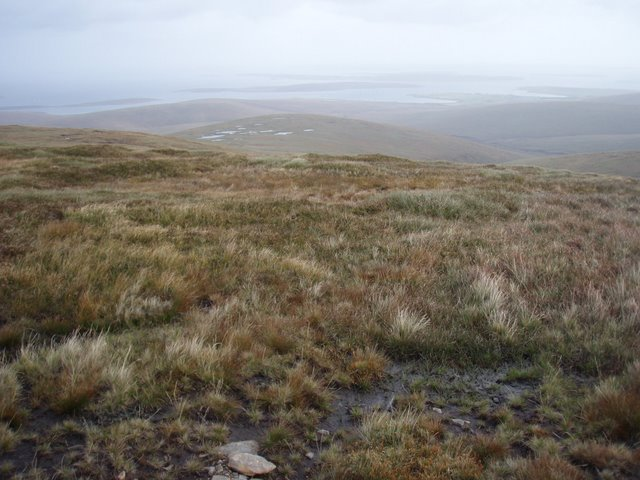 Grassy slopes of Withigill